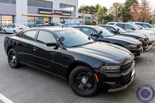 Miami Police Charger AntlopMiami